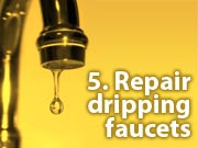 5. Repair dripping faucets